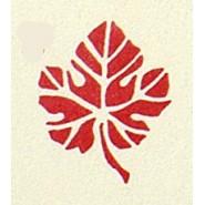 bloem 05