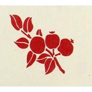 bloem 09